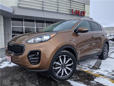 2019 Kia Sportage EX (Stk: K3917) in Chatham - Image 1 of 23
