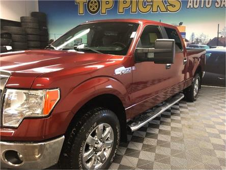 2014 Ford F-150 XLT (Stk: D22021) in NORTH BAY - Image 2 of 26