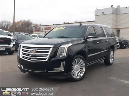 2018 Cadillac Escalade ESV Platinum (Stk: 207017A) in Burlington - Image 1 of 14