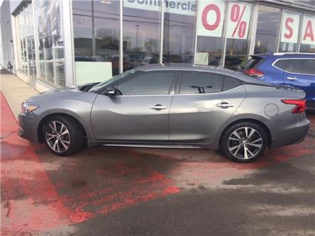 2017 Nissan Maxima  (Stk: N1591) in Hamilton - Image 2 of 12