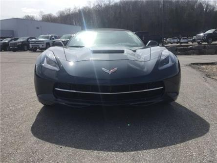 2019 Chevrolet Corvette Stingray (Stk: 19509) in Haliburton - Image 2 of 19