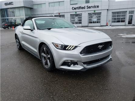 2015 Ford Mustang V6 (Stk: N14241) in Newmarket - Image 2 of 10