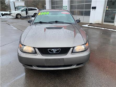 2002 Ford Mustang Base (Stk: ) in Cobourg - Image 2 of 13