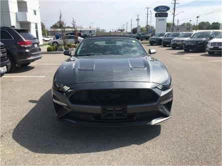 2019 Ford Mustang EcoBoost Premium (Stk: VMU18435) in Chatham - Image 2 of 7