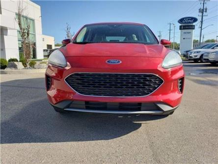 2020 Ford Escape SE (Stk: VEP19019) in Chatham - Image 2 of 12