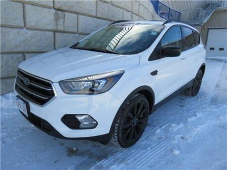 2017 Ford Escape SE (Stk: D91137PA) in Fredericton - Image 1 of 23