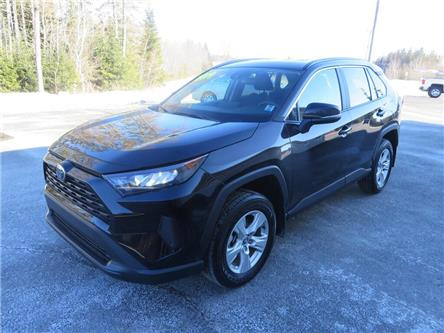 2019 Toyota RAV4 LE (Stk: 61544p) in Fredericton - Image 1 of 14