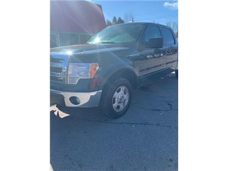 2014 Ford F-150 XLT (Stk: ) in Cobourg - Image 2 of 16