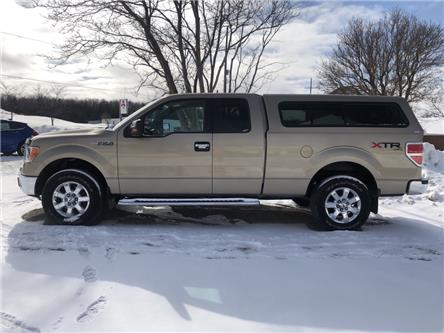 2014 Ford F-150 XLT (Stk: 1FTFX1) in Owen Sound - Image 2 of 12