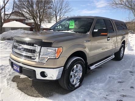 2014 Ford F-150 XLT (Stk: 1FTFX1) in Owen Sound - Image 1 of 12