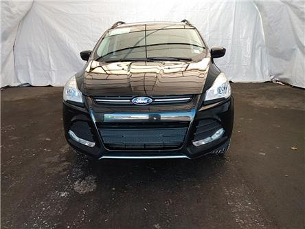 2015 Ford Escape SE (Stk: IU1782) in Thunder Bay - Image 2 of 19