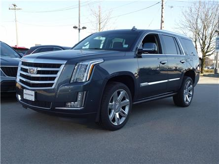 2019 Cadillac Escalade Premium Luxury (Stk: 9005180) in Langley City - Image 1 of 6