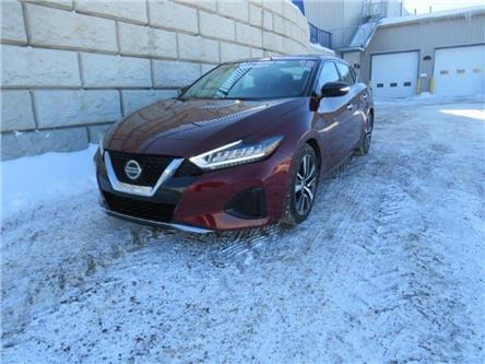 2019 Nissan Maxima  (Stk: D00584P) in Fredericton - Image 1 of 24