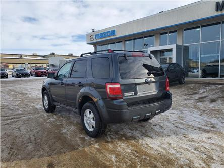 2008 Ford Escape XLT (Stk: M19282A) in Saskatoon - Image 2 of 23