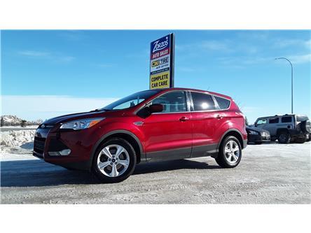 2014 Ford Escape SE (Stk: P670) in Brandon - Image 1 of 28