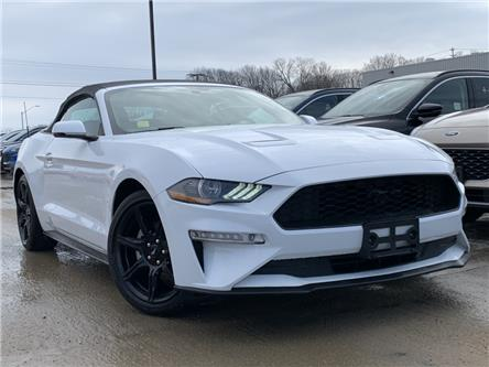 2019 Ford Mustang EcoBoost Premium (Stk: 0RC829) in Midland - Image 1 of 18