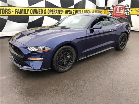 2019 Ford Mustang  (Stk: 49020) in Burlington - Image 1 of 24