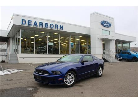2014 Ford Mustang V6 (Stk: TK534A) in Kamloops - Image 1 of 20