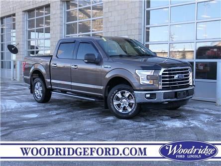 2016 Ford F-150 XLT (Stk: L-183A) in Calgary - Image 1 of 22