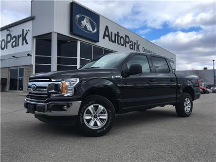 2019 Ford F-150 XLT (Stk: 19-97033RJB) in Barrie - Image 1 of 25