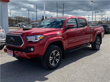 2019 Toyota Tacoma SR5 V6 (Stk: W5015A) in Cobourg - Image 1 of 25