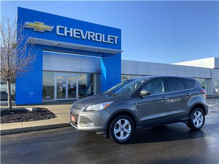 2014 Ford Escape SE (Stk: 00061A) in Tilbury - Image 1 of 16