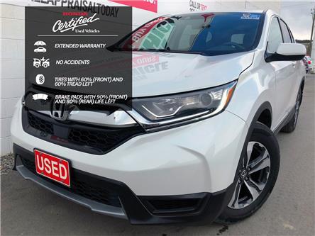 2019 Honda CR-V LX (Stk: B11734) in North Cranbrook - Image 1 of 17