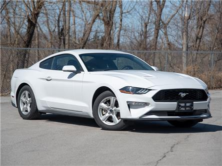 2019 Ford Mustang EcoBoost (Stk: 19MU502) in St. Catharines - Image 1 of 21