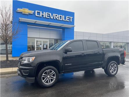2019 Chevrolet Colorado WT (Stk: 00064A) in Tilbury - Image 1 of 17