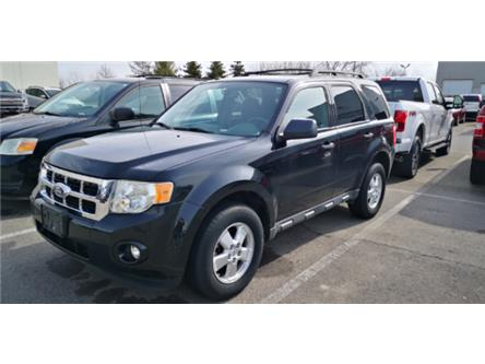 2010 Ford Escape XLT Automatic (Stk: AHL222) in Hamilton - Image 1 of 2