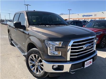 2017 Ford F-150 XLT (Stk: 20T303A) in Midland - Image 1 of 16
