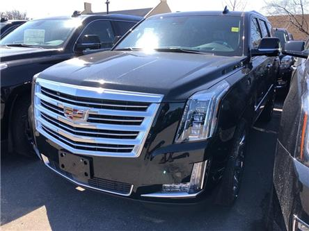 2020 Cadillac Escalade Platinum (Stk: K0K062) in Mississauga - Image 1 of 5