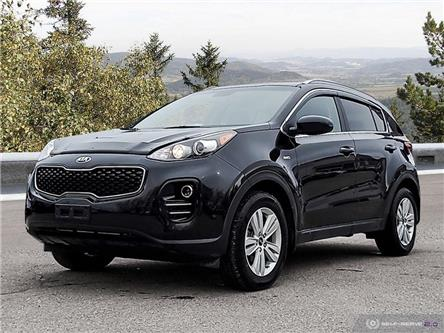 2019 Kia Sportage LX (Stk: 2SP1013A) in Cranbrook - Image 1 of 25