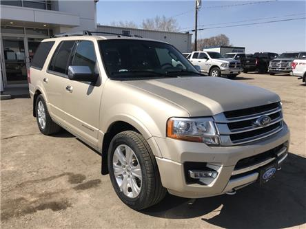 2017 Ford Expedition Platinum (Stk: 9190A) in Wilkie - Image 1 of 22