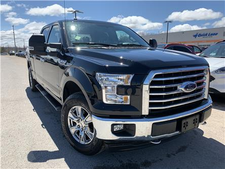 2017 Ford F-150 XLT (Stk: 0069PT) in Midland - Image 1 of 15