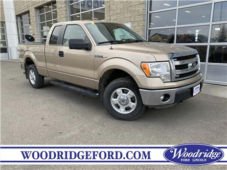 2014 Ford F-150 XLT (Stk: L-213A) in Calgary - Image 1 of 19
