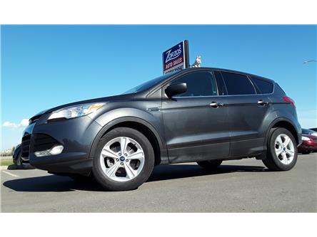 2015 Ford Escape SE (Stk: P691) in Brandon - Image 1 of 26