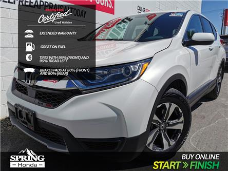 2019 Honda CR-V LX (Stk: B11756) in North Cranbrook - Image 1 of 17