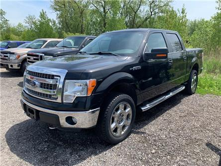 2013 Ford F-150 XLT (Stk: T9790A) in St. Thomas - Image 1 of 7