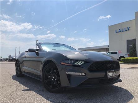 2019 Ford Mustang  (Stk: S10484R) in Leamington - Image 1 of 23