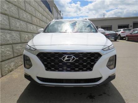 2019 Hyundai Santa Fe  (Stk: D00819P) in Fredericton - Image 1 of 17