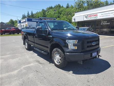 2016 Ford F-150 XL (Stk: zed) in Sudbury - Image 1 of 11