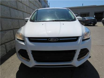 2014 Ford Escape SE (Stk: D00736A) in Fredericton - Image 1 of 17