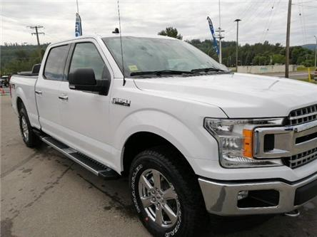 2020 Ford F-150 XLT (Stk: 20T097) in Quesnel - Image 1 of 16