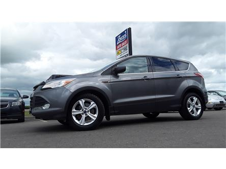 2014 Ford Escape SE (Stk: P701) in Brandon - Image 1 of 9