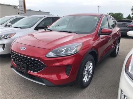 2020 Ford Escape SE (Stk: VEP19529) in Chatham - Image 1 of 5