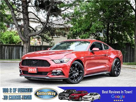 2017 Ford Mustang V6, NAVI, BACKUP, 300HP!! 6 SPEED MANUAL!! (Stk: 5514) in Stoney Creek - Image 1 of 17