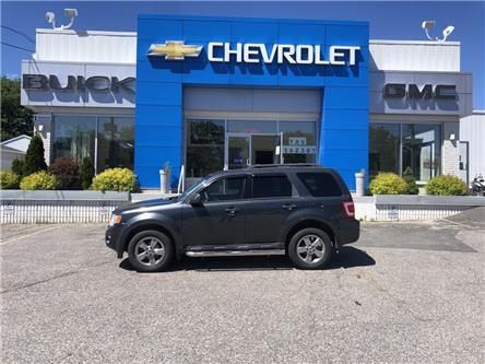 2009 Ford Escape XLT Automatic (Stk: 18623) in Blind River - Image 1 of 13