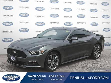 2016 Ford Mustang V6 (Stk: 19MU12A) in Owen Sound - Image 1 of 22