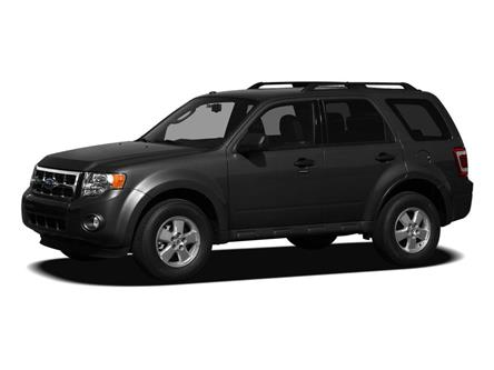 2011 Ford Escape Limited (Stk: 1902306A) in Edmonton - Image 1 of 2